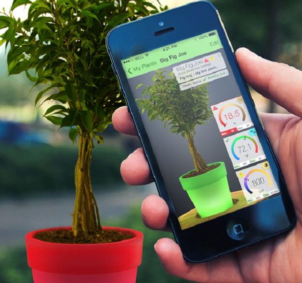 طراحی اپلیکیشن موبایل و بهترین شرکت
